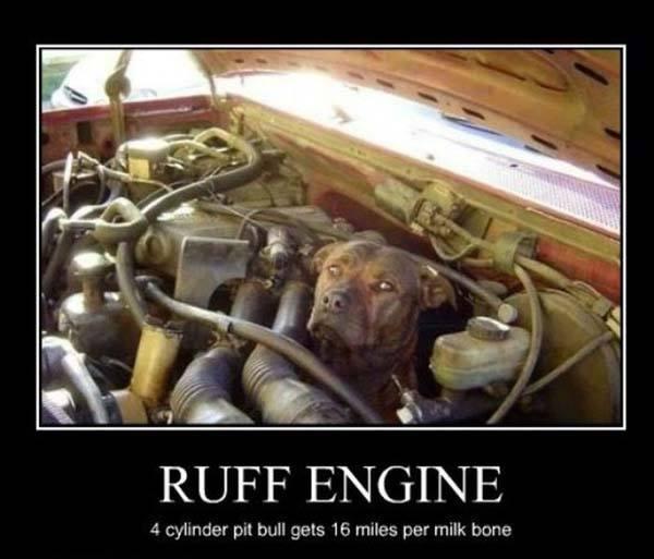 Ruff Diesel Engine